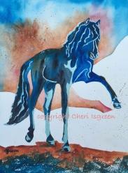 Dream Horse: Pas de Noir
