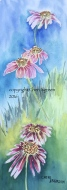 """Upsy Daisy"" framed watercolor 19"" x 10"" $200 copyright C Isgreen"