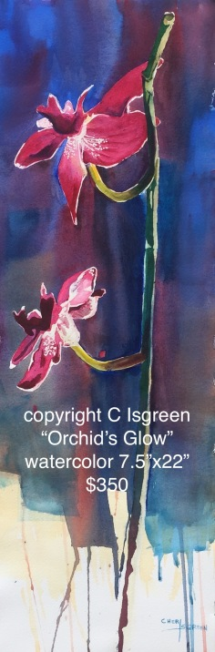 Orchid's Glow