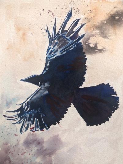 Raven.1