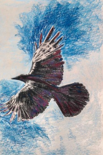 Raven.1p