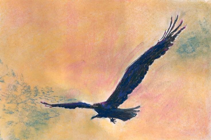Raven.3p